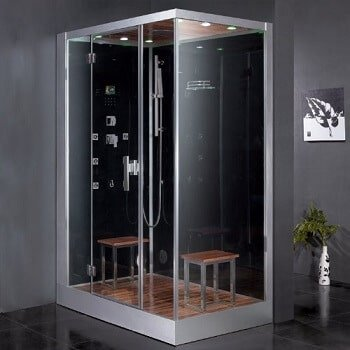 Platinum Series Dz961f8 Blk L Steam Shower
