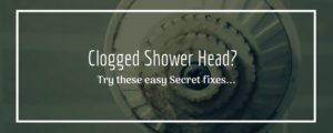 Clogged Shower Head