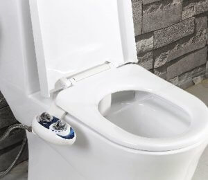 Luxe Bidet Neo 120 review